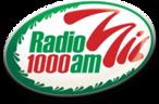Large_radio_mil_viajes
