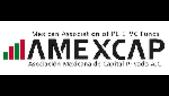 Large_amexcap